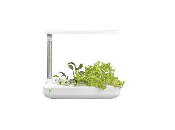 VegeBOX Table Vegebox planting machine with EU plug, white